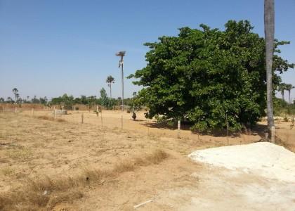 Actualité immobilière au Sénégal: Vente de terrain au Sénégal